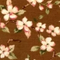 Apple Blossom Brown